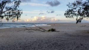 Inskip Point Camping Ground